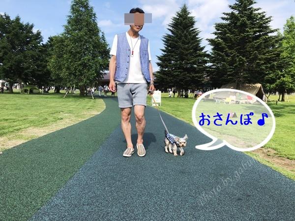 軽井沢アウトレット トリミング